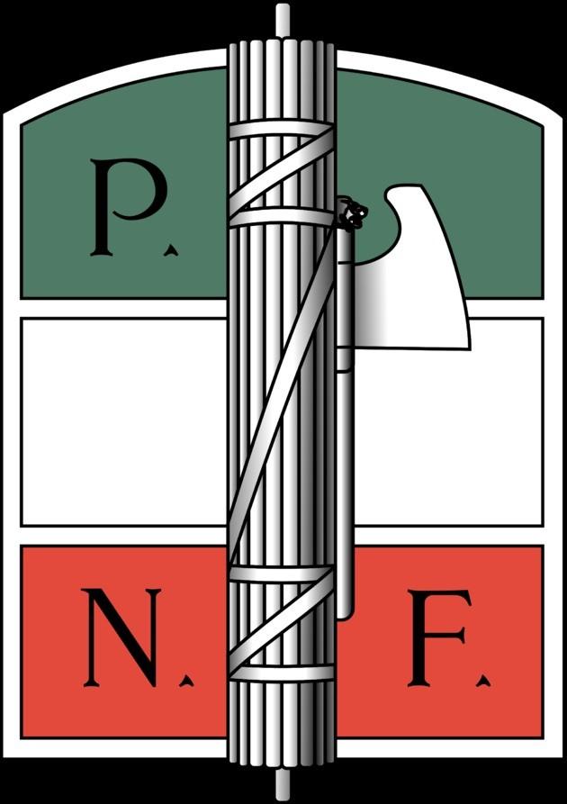 fashist flag