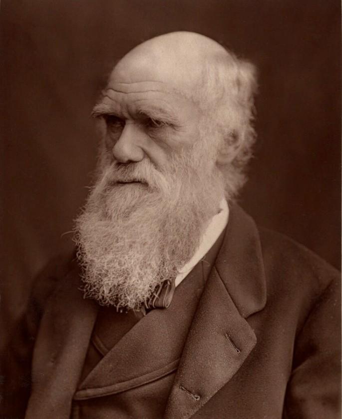 Чарльз Дарвин (1809–1882)