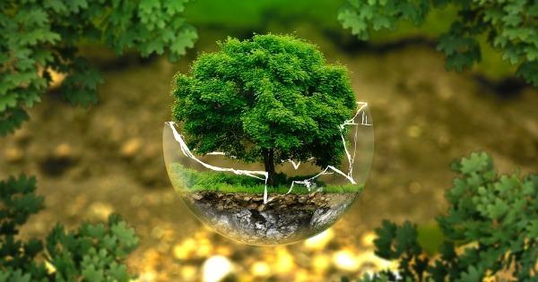 Что такое Экосистема - Узнай Что Такое