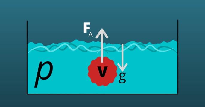 Сила Архимеда рисунок закон Архимеда рисунок: V, Fa наверх, g вниз