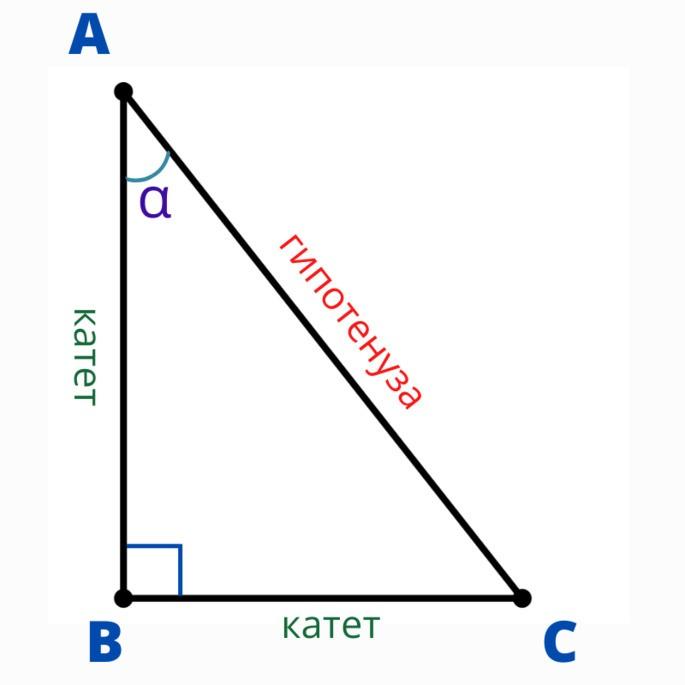 прямоугольный треугольник ABC с углом α в вершине A, гипотенуза самая длинная сторона AC, катеты — это две другие рядом с прямым углом BC и AB