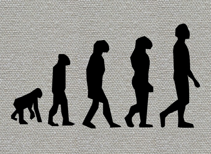 Пример изображения эволюционной теории Дарвина, применённый к людям.