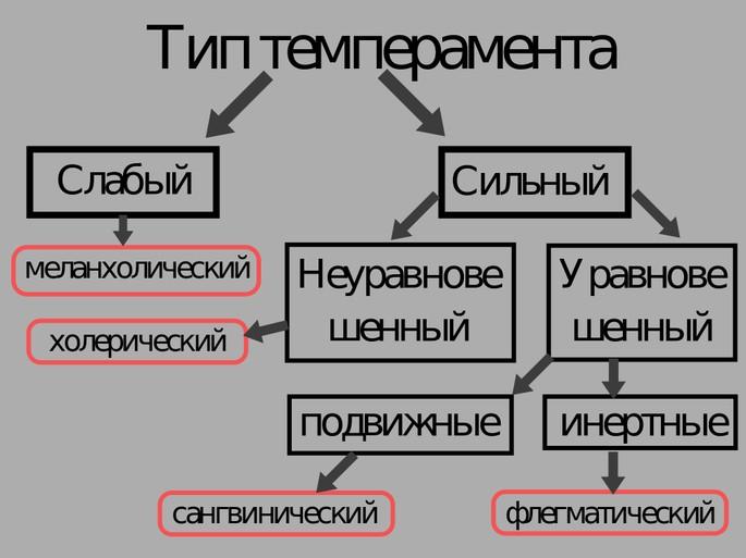 Типы темперамента по Павлову